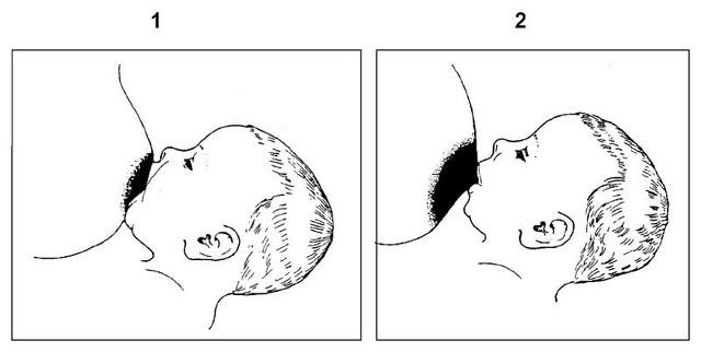 Как правильно приложить ребёнка к груди